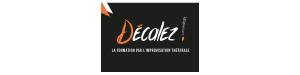 Logo Decalez